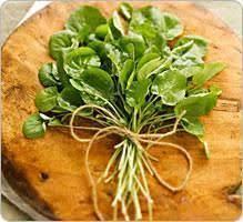 comment cuisiner le cresson le cresson bienfaits santé propriétés conservation