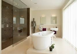 walk through shower bathroom contemporary with his and hers metal