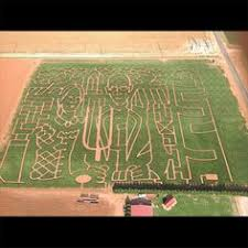 Maxwells Pumpkin Patch Amarillo Texas by Fun Is Sure To Be Had Maxwell U0027s Pumpkin Farm Cornmaze If You Are
