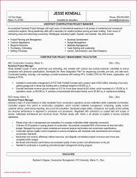 100 Project Coordinator Resume Samples Manager Objective