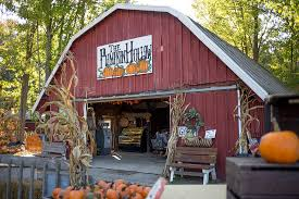 Tims Pumpkin Patch by The Ins And Outs Of Central New York Apple And Seasonal Fruit