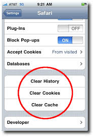 iPhone Safari browser privacy and security history cookies