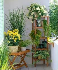 Um Jardim Para Cuidar Use A Sua Varanda