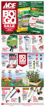Adirondack Chairs Ace Hardware by Best 25 Ace Hardware Ideas On Pinterest