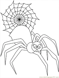 Coloring Pages Spider Animals