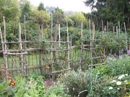 Giving A New Garden Sense Of Age