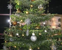 Christmas Trees Types Uk by Christmas Trees U0026 Displays Beechside Group Beechside Nursery