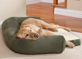 drs foster and smith dog beds alluring dog beds drs foster and dog