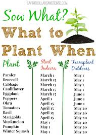 Vegetable Garden Seeds Or Plants | Newport Outdoor Decoration Stacked Pickle Coupon Code Robyn Story Designs Promo Office Supply Coupons Deals And Coupon Codes Promo Axel Hotel Madrid Waffle House Coupons January 2019 Burpee Perennial Echinacea Purple White Coneflower Cort Discount Codes For Great Wolf Lodge Ncord Nc Elf Mobile Lenox Outlet Store Kinston Gen X Sports Betting Deposit Atlanta Hartsfield The National Heirloom Expo Please Make Sure You Choose Either The Mosaic Or University Castello Del Nero Market 305