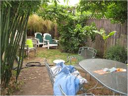 Backyards : Charming Small Garden Design Ideas For Dogs The ... Easy Backyard Landscape Design Ideas Triyae Various Outdoor Lawn And Garden Best No Grass Yard On Pinterest Dog Friendly Backyards Amazing 42 Landscaping Small Simple Inspiring Patio A Budget With Cozy Look For Dogs Sunset Prescott Your Appmon Front Compact English