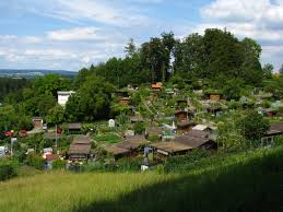 100 Second Hand Summer House Allotment Gardening Wikipedia
