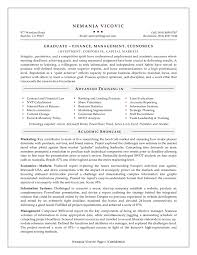 Resume Objective Business