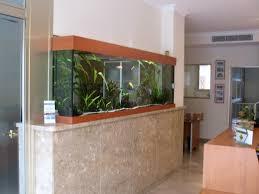 aquarium dans le mur fabrication vente aquariums eau douce odyssee aquarium odyssee