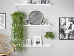 artificial plant asparagus 150 cm ch