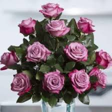 Lavender & Purple Roses