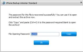 Backup Password Recovery