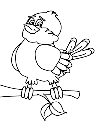 Beautiful Looking Quetzal Animal Coloring Pages Page Place Ariel Printable