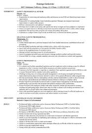 Safety Professional Resume Samples | Velvet Jobs Sample Resume For Fresh Graduates It Professional Jobsdb Resume Examples By Real People Makeup Artist Storekeeper Mintresume Accounting Job Description Cover Letter Skills General Rumes Letters And Interviews Security Guard Mplates 20 Free Download Resumeio Delivery Driver Livecareer Insurance Agent Professional Event Codinator Monstercom View 30 Samples Of Industry Experience Level Format Onepage 11 Amazing Management