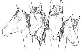 79 Printable Realistic Horse Coloring Pages Animals Wild Horses Getcoloringpagescom Pictures Of Running