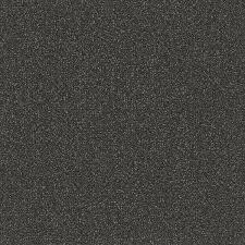 carpet abrasive ii 02578 tandus centiva pro