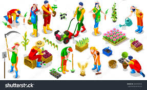 Harrow Christmas Tree Collection by Isometric Barley Farmer People 3d Game Stock Vector 566798470
