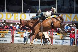 Daily Themes And Events At The 105th California Rodeo Salinas ... Up To 60 Off Mobil Delvac Engine Oils Rdo Truck Centers On Twitter Need A Box Truck Contact Your New 2018 Nissan Titan Pro4x In Rockford Il Anderson Great Place Work Youtube Lja Other Markets Farm Rescue Adds Nebraska Service Area Agweek Look At This Beautiful Anthem Thank Rl Engebretson About Us Expands New Location Dickinson Prairie Business Magazine Brahmos Indias Supersonic Missile That Terrifies China Thanks