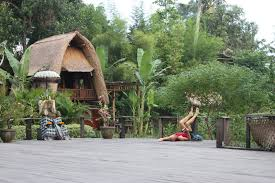 10 Things To Do In Ubud (Bali) | Tourism Places Reflecting On A Lifechaing Month In Bali Tara Bliss 5 Amazing Places To Practice Yoga Upward Facing Blog The Barn Ubud Acvities Bible Wheres The Best Class Find Strength And Serenity At In Trip101 The Yoga Barn I Ubud Bali Sassa Asli 10 Things Do Tourism Studio Visit Auf Yogatonic Workshops Tina Nance