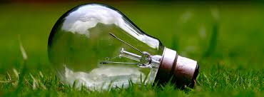what are the different types of light bulbs do it best