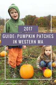 Pumpkin Farms In Nj by Pumpkin Patches In Western Ma A Cookie Before Dinner