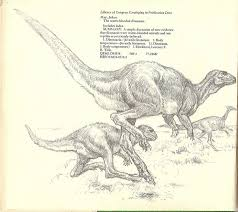 Feathered Ornithischians By Lorene Bjorklund From The Warm Blooded Dinosaurs 1979