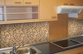 Overmount Double Kitchen Sink by Kitchen Memorable Double Kitchen Sink Plumbing With Disposal