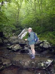 Charlottesville Chapter Jones Run Trail Doyles River Falls June