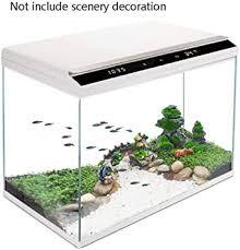 fischbehälter aquarium aquarium wohnzimmer transparent