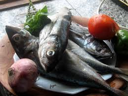 poisson a cuisiner une recette le poisson maquereau et missolè le de fryou