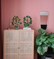 grün trifft auf rosa pflanzenliebe in meinem wohn