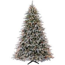 D24 75 Pre Lit Ruth Flocked Berry Christmas Tree