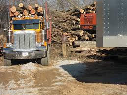 100 Logging Truck Accident Log S In The United States