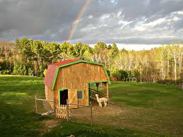 Maine Alpaca Barn Via Google Image Result For Http ... A Bolt From The Blue Black House Dresden And Barn 15 Sonworthy Event Wedding Venues In Maine Venuelust Beautiful Weddings Amsterdam Beyond Hansen Pole Buildings Affordable Building Kits Photographs Yankee Magazine Download Home For Sale Michigan Design 532 Dyer Brook Best 25 Loft Ideas On Pinterest Loft Spaces Houses With Oneofakind Timber Frame Barn Turned Stunning Home 2 Barns Lincoln Farms Elephant