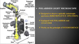 POWERPOINT PRESENTATION ON POLARISED MICROSCOPE ppt video online
