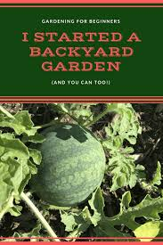 Backyard Gardening For Beginners (like Me!) • All Things Fadra Gardening In The Pacific Northwest 2013 Backyard Garden Plot With Different Types Of Vegetables Nice Backyards Charming Ideas Vegetable Tips For Planting A Meadow Diy Fairy Gardens 101 By Molly Mackenna Home Design Outdoor Designs Modern Backyard Vegetable Garden Plans Intended Dream Skillzmatic 652 Best My Renovation Images On Pinterest Transform Your Into Botanic Classical Lovely Marvelous Recession Benefits Of Raising Chickens Purina Animal Nutrition
