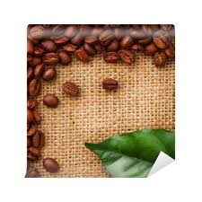 Coffee Border Design Beans And Leaves Wall Mural O PixersR We Live To Change