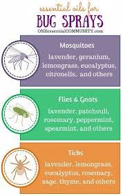 best 25 homemade bug repellant ideas on pinterest natural bug