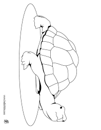 Cute Turtle Coloring Page Go Green And Color Online This You Can Also Print Out
