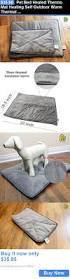 Heated Dog Beds Walmart by Best 25 Heated Dog Bed Ideas On Pinterest Amazing Dog Houses
