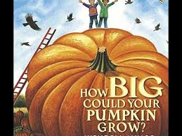 Spookley The Square Pumpkin Book Read Aloud by How Big Could Your Pumpkin Grow Children U0027s Read Aloud Youtube