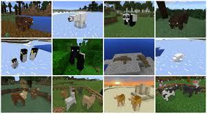 Minecraft Melon Seeds by Pocket Creatures Mc Pe 0 15 X 0 16 X Elephants Lions