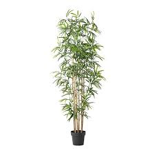 culture bambou en pot fejka plante artificielle en pot ikea