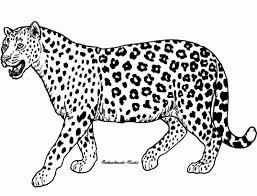 Coloring Page Cheetah Animals 25