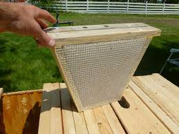 A Candy Board Insert For A Top Bar Hive.   Honey Bees   Pinterest ... Langstroth Topbar Long Box By Eco Bee Eco Bee Box Modern Standard Top Bars For The Bkeeper Culture Feeding A Bar Hive Thirteenvegetables Frames Bkeeping Afloat Bees In Days Ferry Organics Like A Girl Langstroth Vs Top Bar Hive How To Avoid Crosscomb Topbars And Hives Overall Transfer Brood Comb From New Top Bar Topbarhive Backyard Blog Supering Cathedral New Hexagonal Youtube