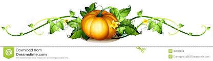 Drawn pumpkin vine 2